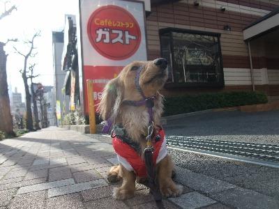 110306nobunaga.jpg