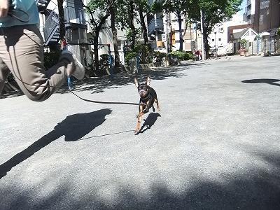 2012_0513home0065.jpg