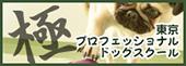 東京プロフェッショナルドッグスクール