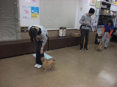 k-hanamei101211.jpg
