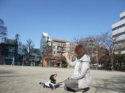 kotarou101218.jpg
