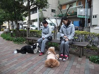 momjiro110103.jpg