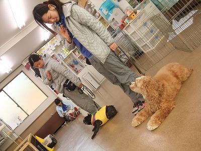monjiro110111.jpg