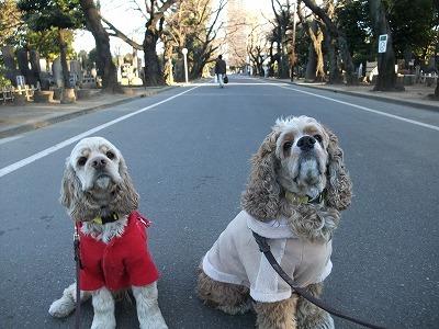 monjiro110113.jpg