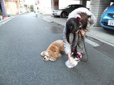 monjiro110116.jpg