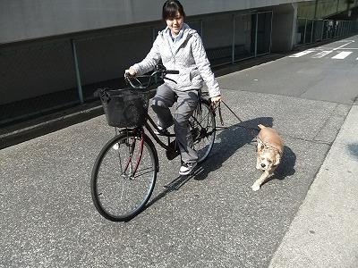 monjiro110325.jpg