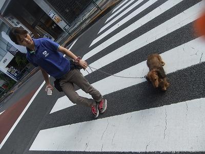 y-ryu0809.jpg