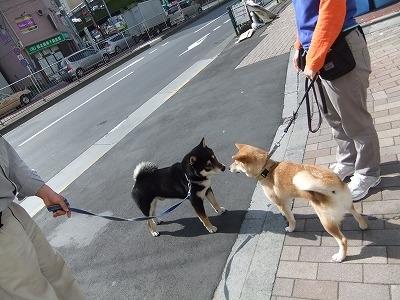 yukiti0427.jpg