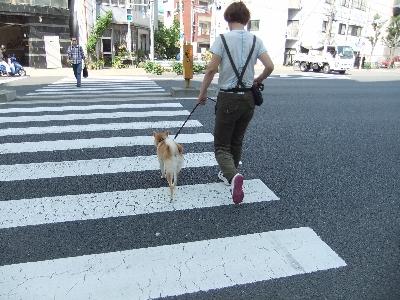 yukiti0519.jpg